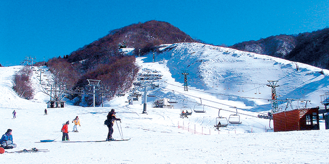 奥 伊吹 スキー 場 オープン 日